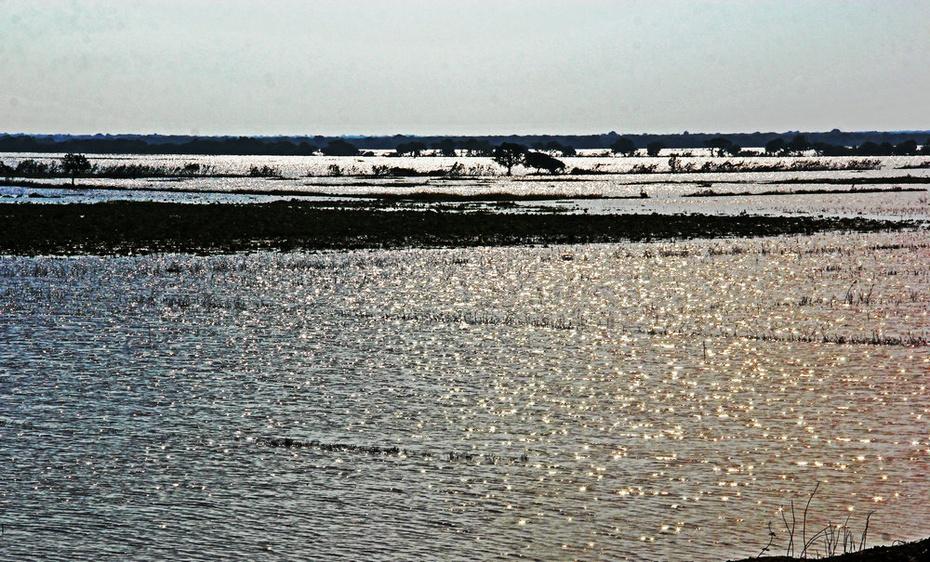 巴肯山顶游古寺颓垣。洞里萨湖看水上人家-游奇迹吴哥窟之七 - 侠义客 - 伊大成 的博客