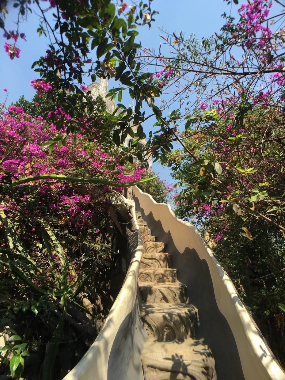 隐藏在越南的童话小城——大叻【周若雪Patty】 - 风帆页页 - 风帆页页博客