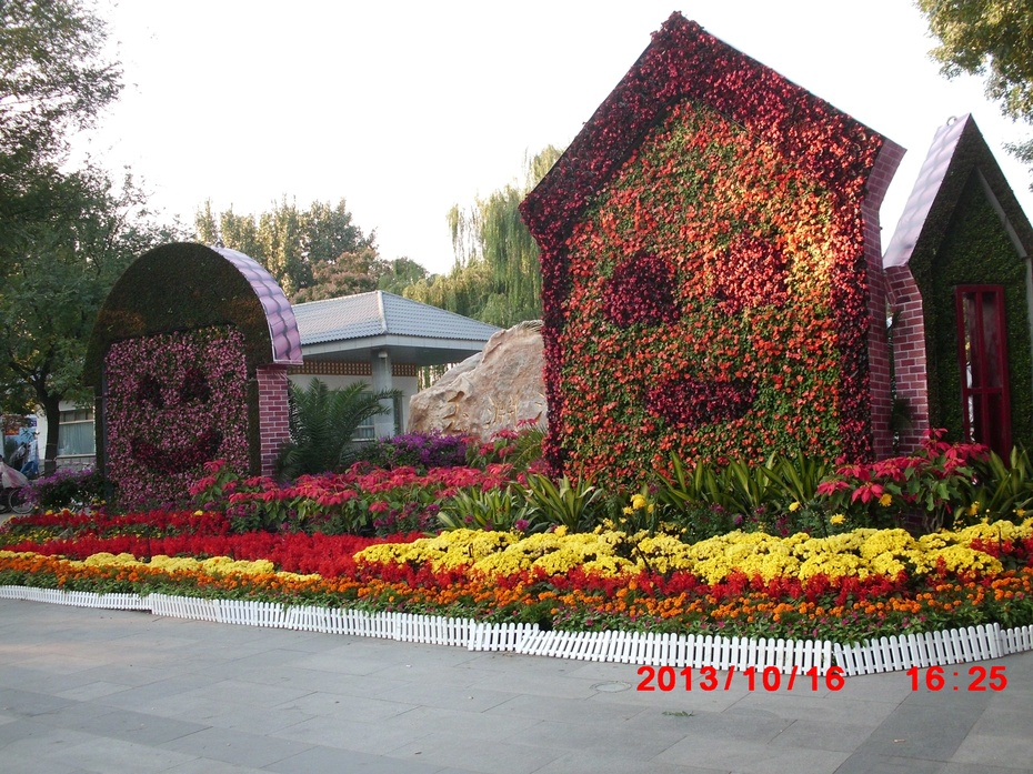 节后京城花更美(原创) - ydq200888 - ydq200888的博客