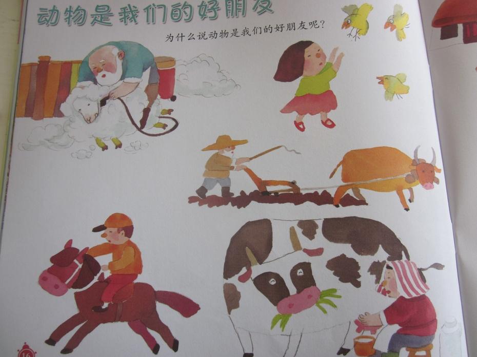 主题:动物王国 2013-10-23