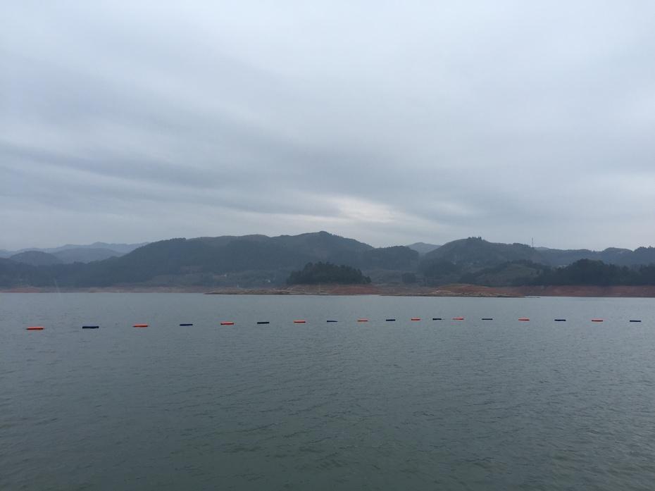 畅游遂昌之三——千鱼飞跃 - 蔷薇花开 - 蔷薇花开的博客