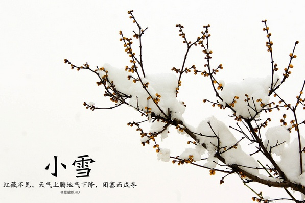 【原创】小雪 - lurenlaobao2009 - lurenlaobao2009的博客