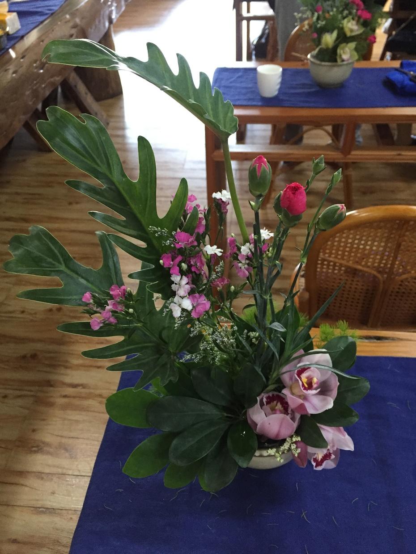 春到玫瑰园 - 蔷薇花开 - 蔷薇花开的博客