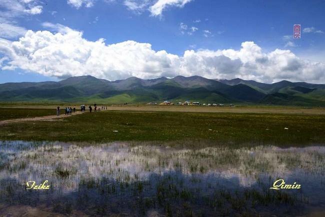 青甘记行16: 大美青海湖(三) - 古藤新枝 - 古藤的博客