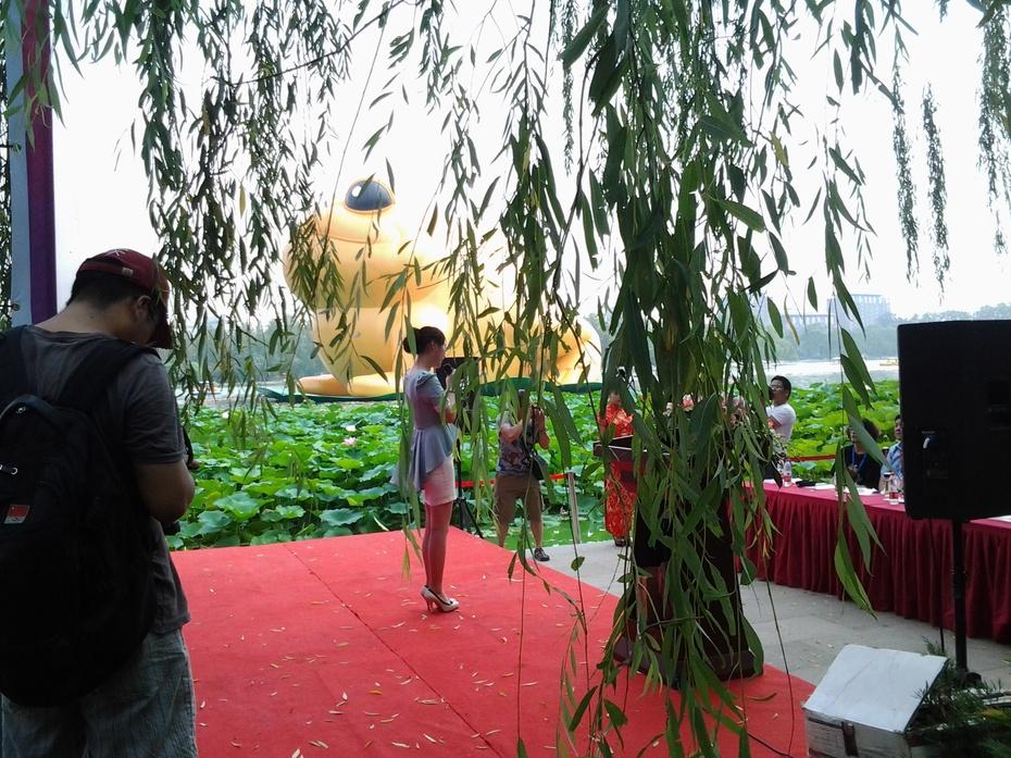"""高22米充气""""蛤蟆""""亮相北京玉渊潭公园(亚洲地区第一高)[图文]1 - ydq200888 - ydq200888的博客"""