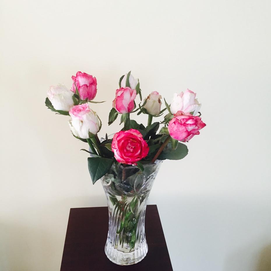 母亲节 - 蔷薇花开 - 蔷薇花开的博客