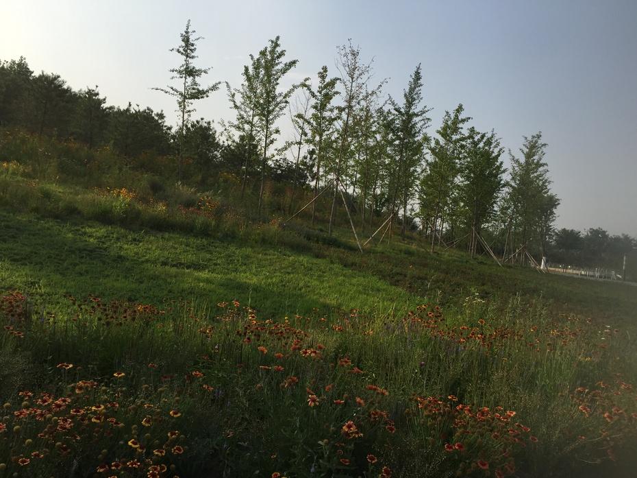 探寻南水北调北京终点:团城湖 - 余昌国 - 我的博客