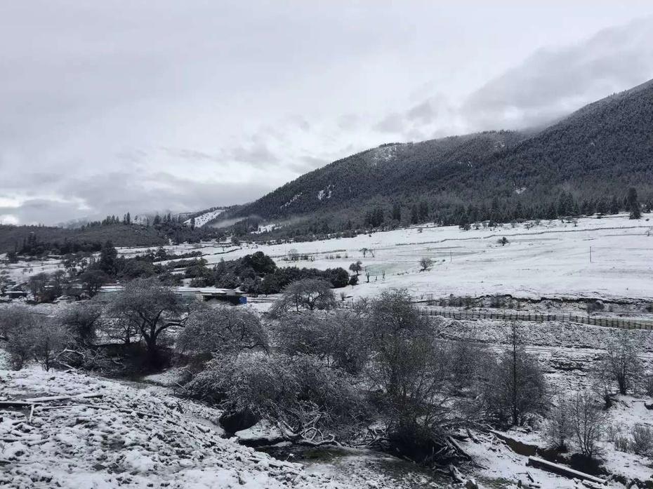 大美西藏:雪中鲁朗别有味道 - 余昌国 - 我的博客