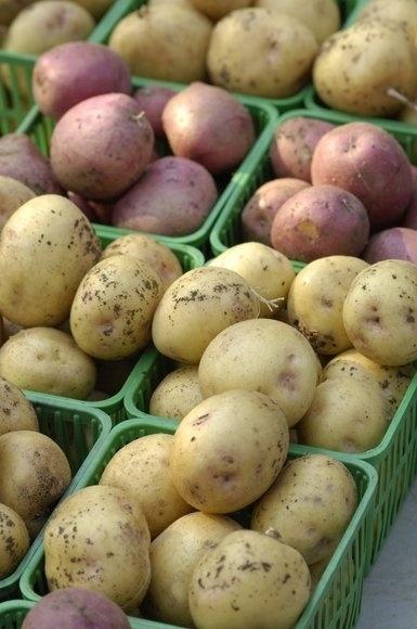 10种绝不应该放进冰箱储存的食物 - 嘉人marieclaire - 嘉人中文网 官方博客