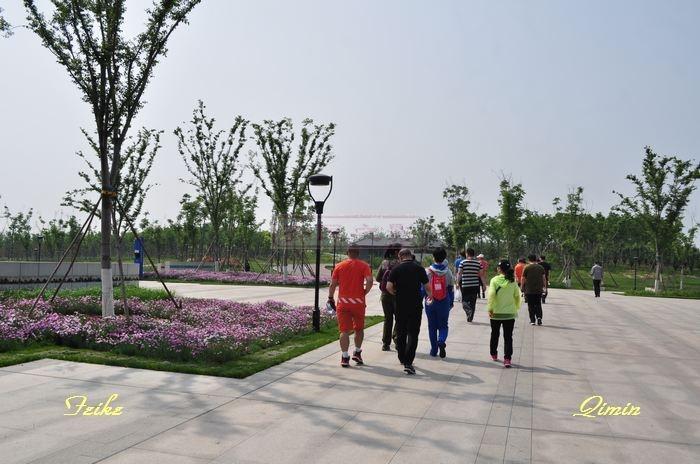 孝妇河湿地公园揽景2 - 古藤新枝 - 古藤的博客