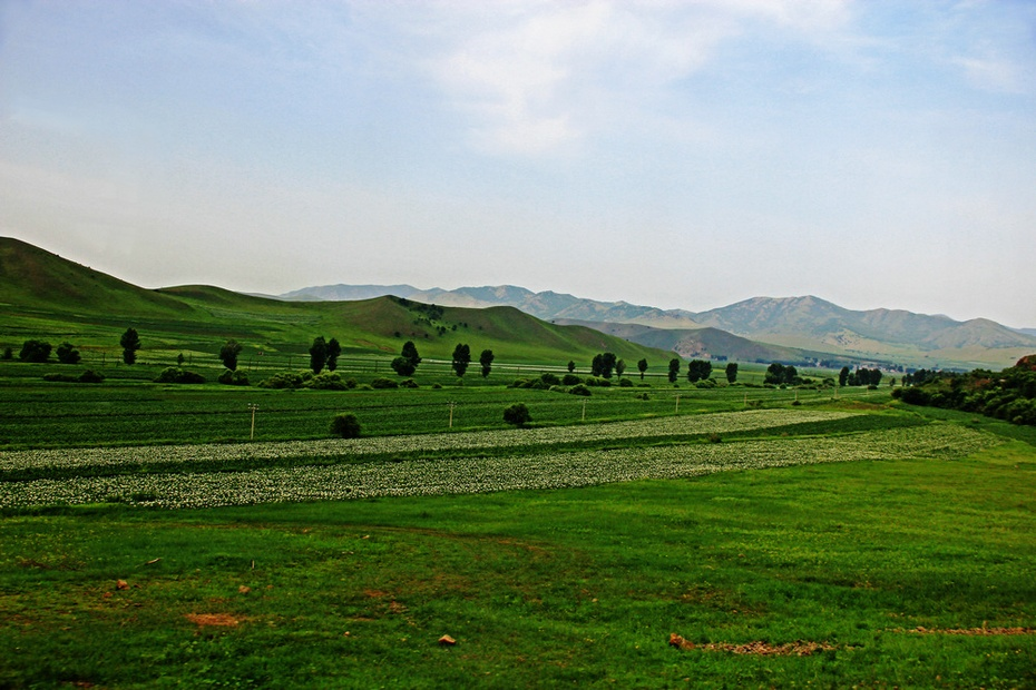大兴安岭风景美,内蒙草原水草丰--暑期东北行之二 - 侠义客 - 伊大成 的博客