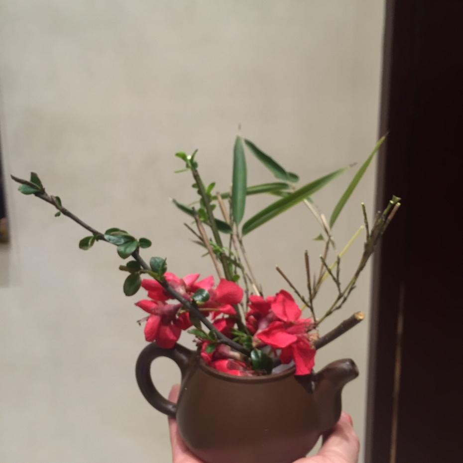 品鉴百笋宴 - 蔷薇花开 - 蔷薇花开的博客