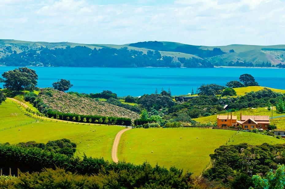 悦容蜜荐:将新西兰国宝级成分凝结成一瓶睡眠面膜,是一种怎样的