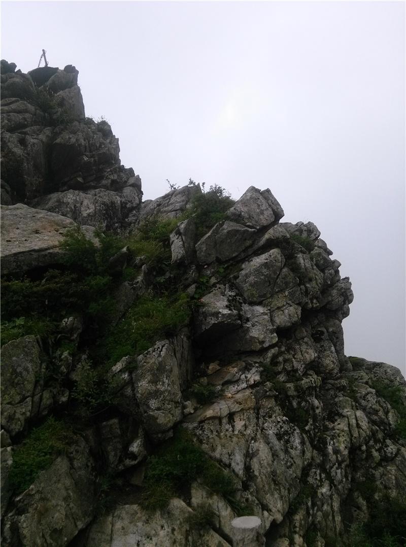 秦岭朱雀国家森林公园2醉仙峰景区