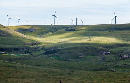 作为世界三大高山草原之一的黄花沟草原,位于内蒙古乌兰察布市察哈尔