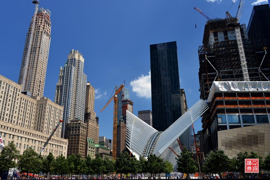 """实拍:有一种常态叫""""纽约蓝"""" - 心路独舞 - 心路独舞"""