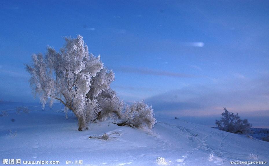 【原创】夜雪 - lurenlaobao2009 - lurenlaobao2009的博客