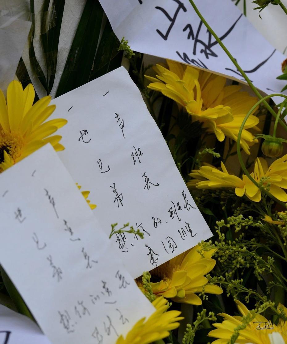 2014年04月30日 - 田戈V田跃 - 映象★老山