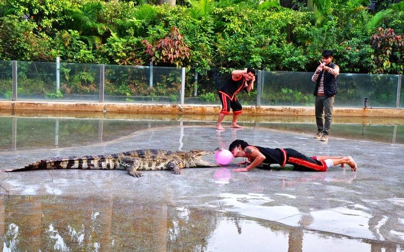 广州攻略旅游景点广州鳄鱼玩法周边大千世界万狮如意游戏机公园图片