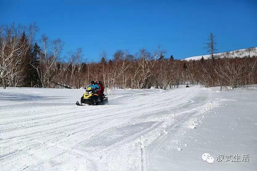 滑雪,长白山与亚布力该如何选择? - 赵雅芝 - 坏女人