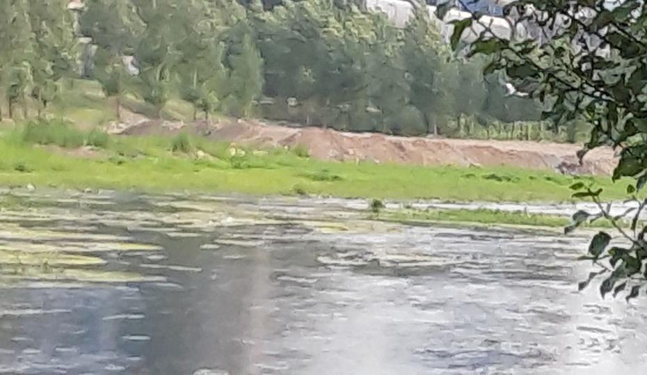 河边骑行 - 淡淡云 - 淡淡云