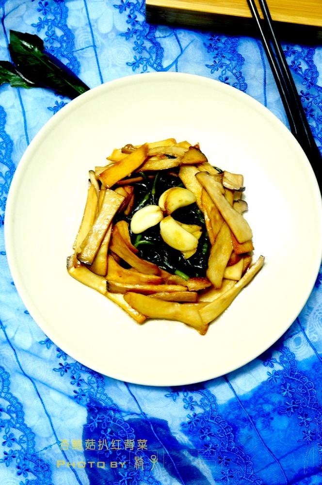 去杏鲍菇扒红背菜 - 慢美食 - 慢 美 食