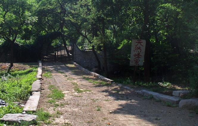 2016-6-18 乐水行之16季-26 边走边吃的夏天 - stew tiger - 乐水行的风斗