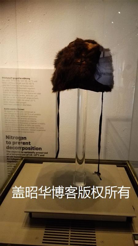 阿尔卑斯山冰人木乃伊之谜 - 盖昭华 - 盖昭华的博客