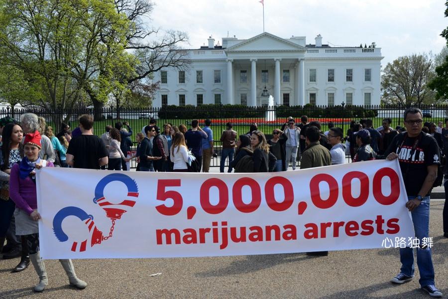 实拍:到白宫前集体抽大麻去 - 心路独舞 - 心路独舞