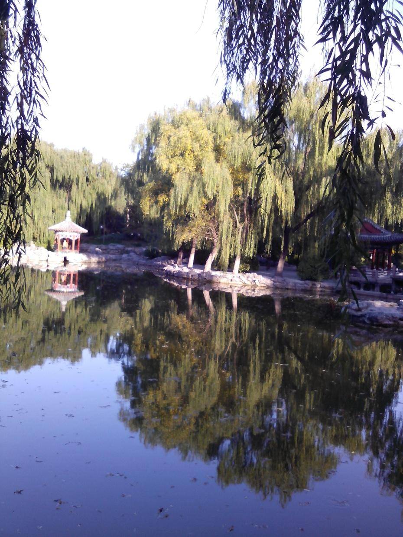 山清水秀——北京日坛公园游记 - ydq200888 - ydq200888的博客