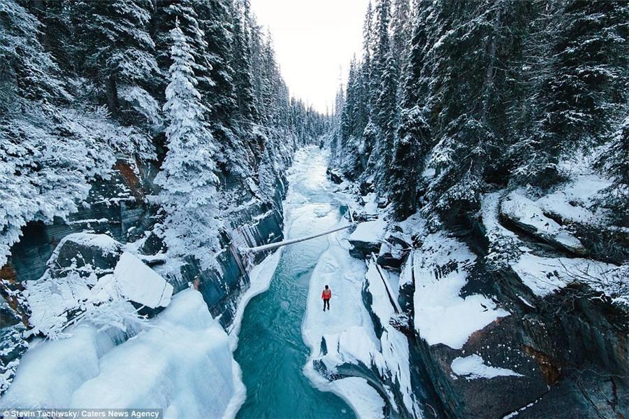 加拿大郊野冬景 - 古藤新枝 - 古藤的博客