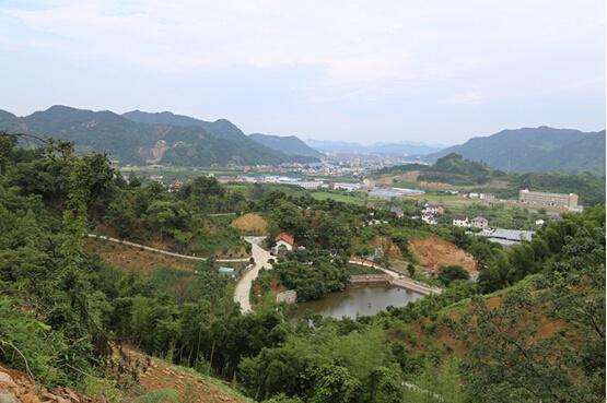 预告篇:临安玉和家庭农场提前曝光图片