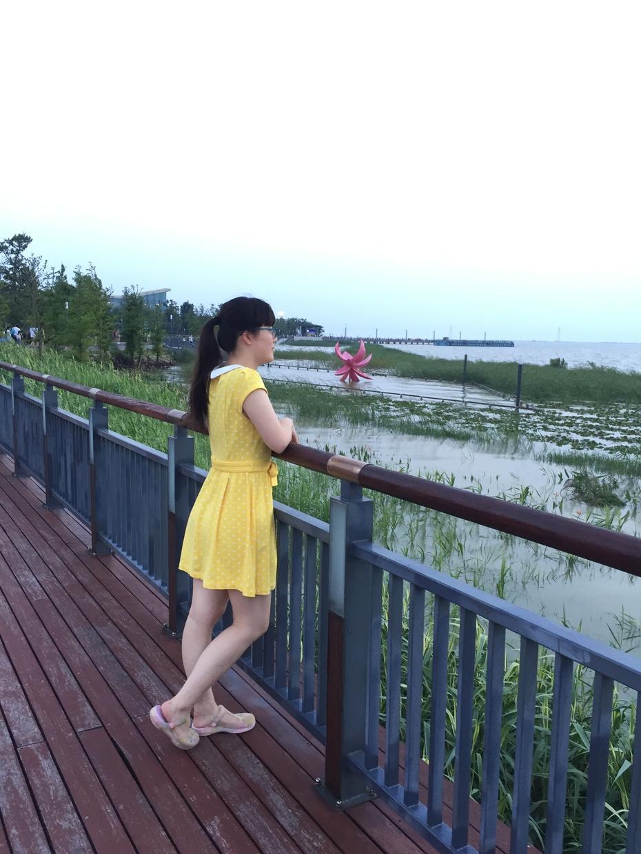 与台风灿鸿擦肩而过 - 蔷薇花开 - 蔷薇花开的博客