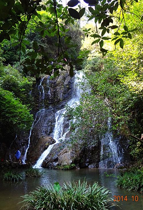 壁纸 风景 旅游 瀑布 山水 桌面 500_735 竖版 竖屏 手机