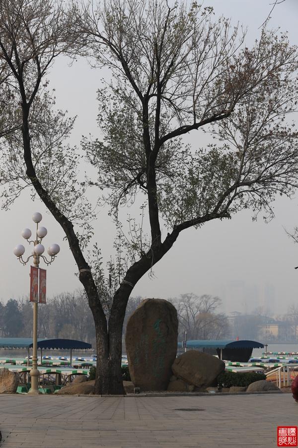 实拍:天津水上公园 - 海军航空兵 - 海军航空兵
