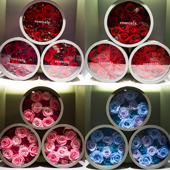 玫瑰玫瑰我爱你 - toni雌和尚 - toni 雌和尚的时尚经