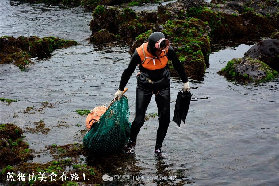 抓住夏天尾巴 去济州岛吃海鲜,买买买 - 蓝冰滢 - 蓝猪坊 创意美食工作室
