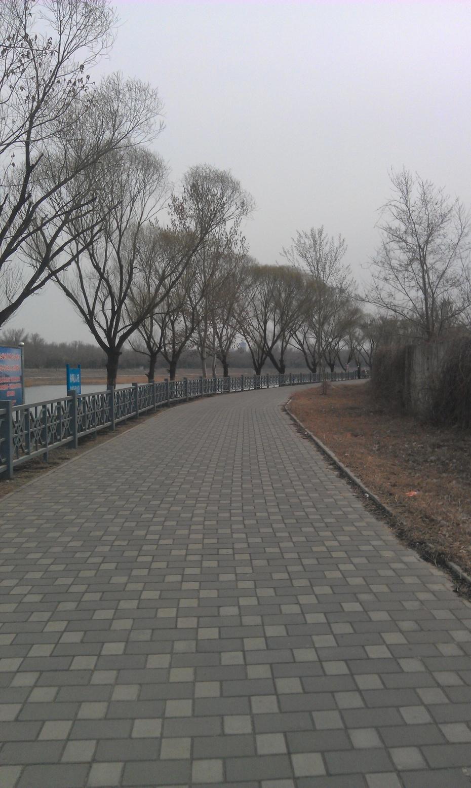 2016-3-19 乐水行之16季-13 渴死的潮白河 - stew tiger - 乐水行的风斗