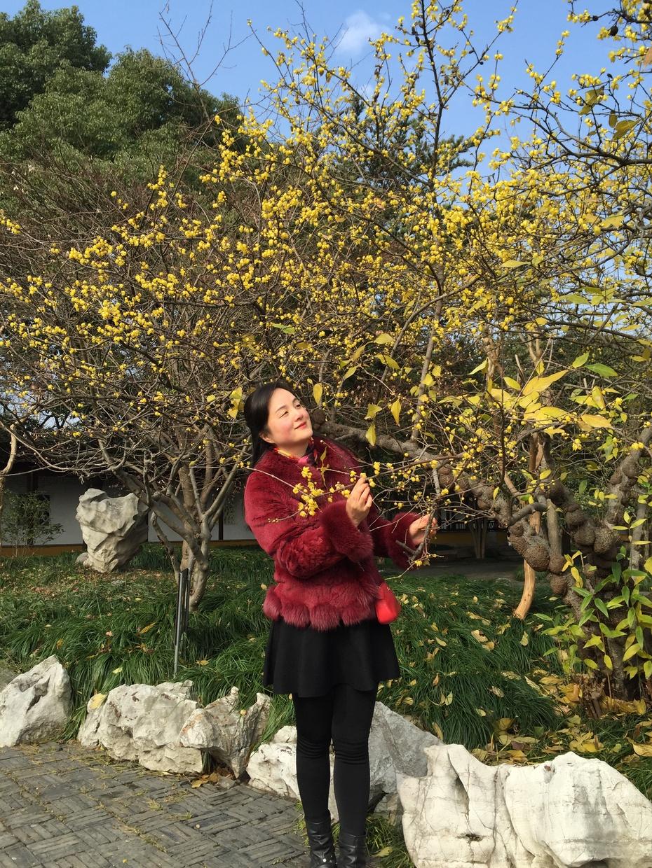 冬游园林 - 蔷薇花开 - 蔷薇花开的博客