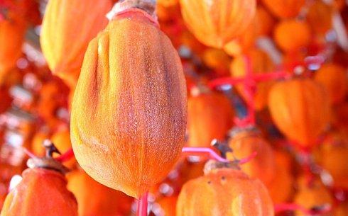 佳节礼品美食-咸安柿饼【韩国旅游·庆南特产】 - 艾彼斯 - 。