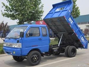 中国农村低速四轮货车市场现状一瞥 - 杨再舜 - 杨再舜汽车博客