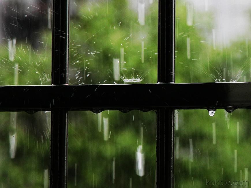 有雨的天 - wwwyyy5136 - wwwyyy5136的博客
