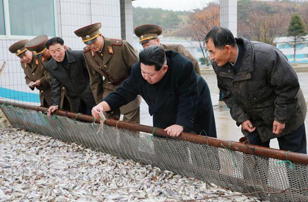 【朝鲜志异】金正恩一看就感到肚子饱的风景 - 林海东 - 林海东的博客