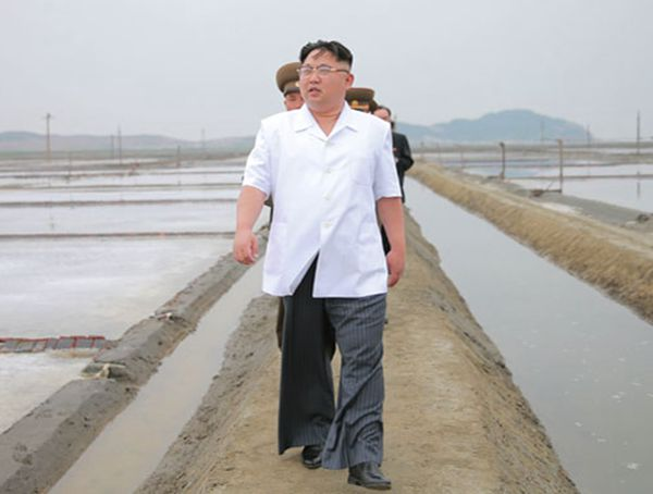 致函逼问潘基文,朝鲜意欲何为? - 林海东 - 林海东的博客