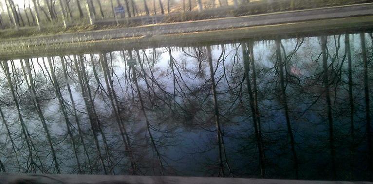 2016-3-26 乐水行之16季-14  阳春中的水栈道 - stew tiger - 乐水行的风斗