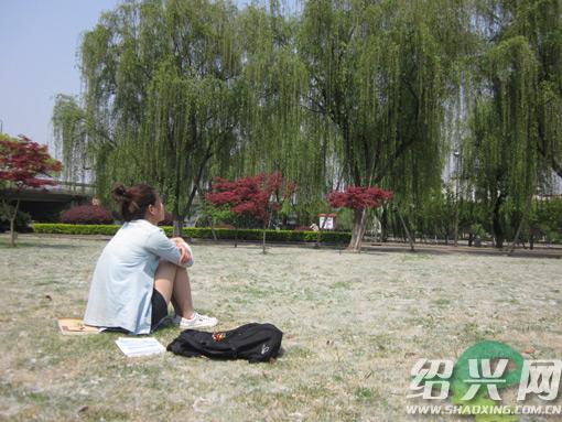 【原创】柳絮 - lurenlaobao2009 - lurenlaobao2009的博客