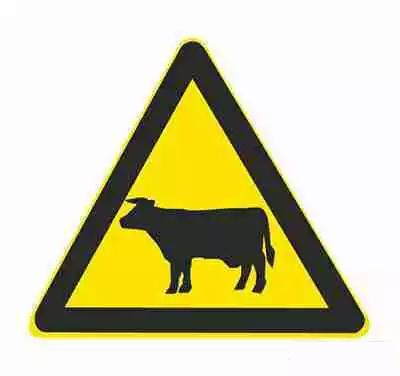 注意牲畜標志