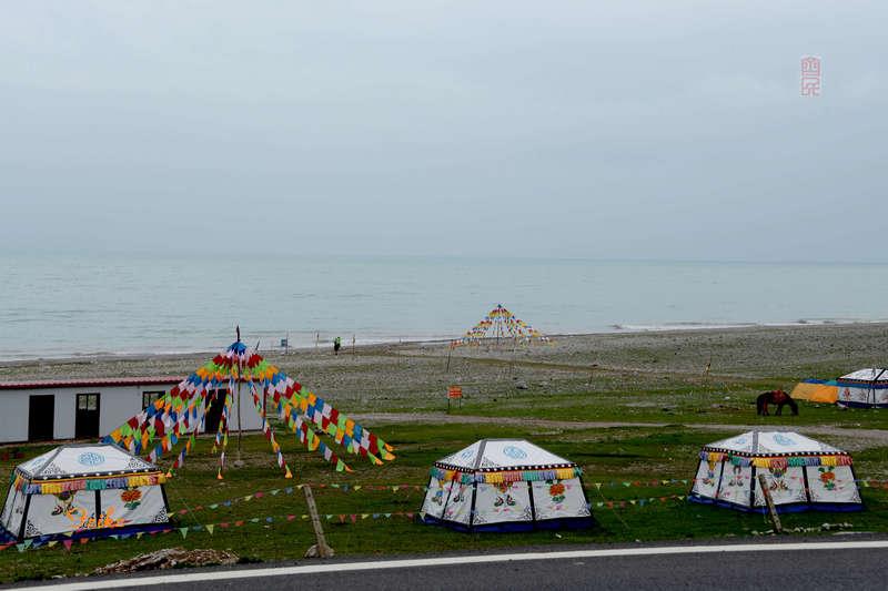 【原创影记】大美青海3——宿营青海湖 - 古藤新枝 - 古藤的博客