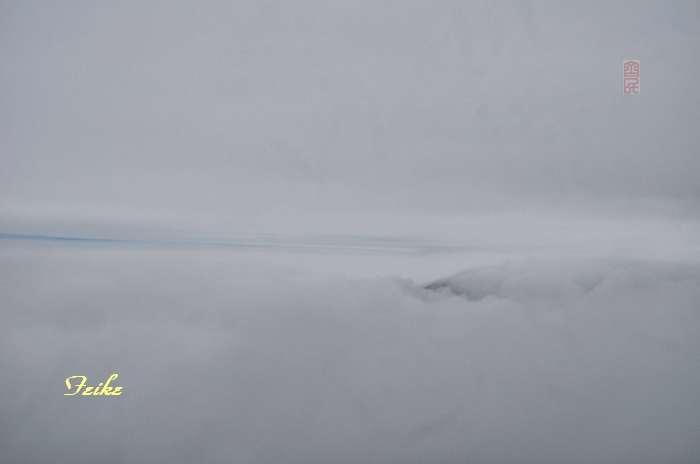 【原创影记】蒙山龟蒙行3 - 古藤新枝 - 古藤的博客
