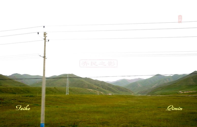 青甘记行33: 祁连山草原(一) - 古藤新枝 - 古藤的博客